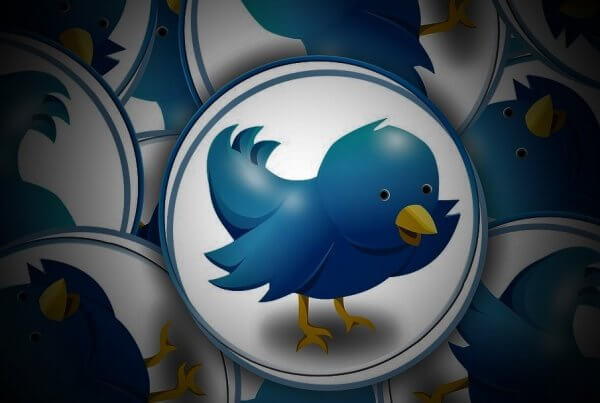 Twitter Crop Image Algorithm: Are Changes Coming Our Way?   EmailOut.com - free email marketing software